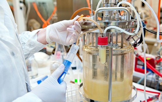 Bioreactor in use, bioprocessing, fermenter market