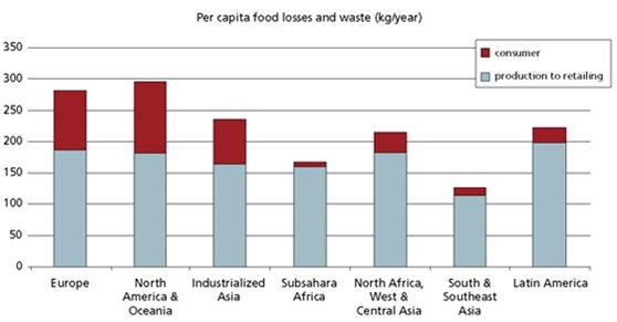 Food Losses