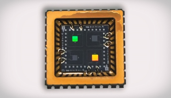 DIE sensor (sensor with a small silicon circuit) with interdigitated electrodes and coatings