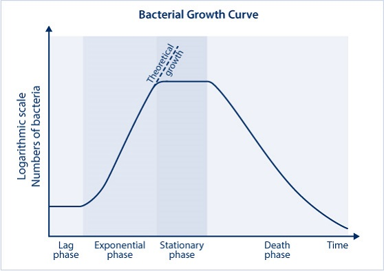 bioreactor bacterial growth curve